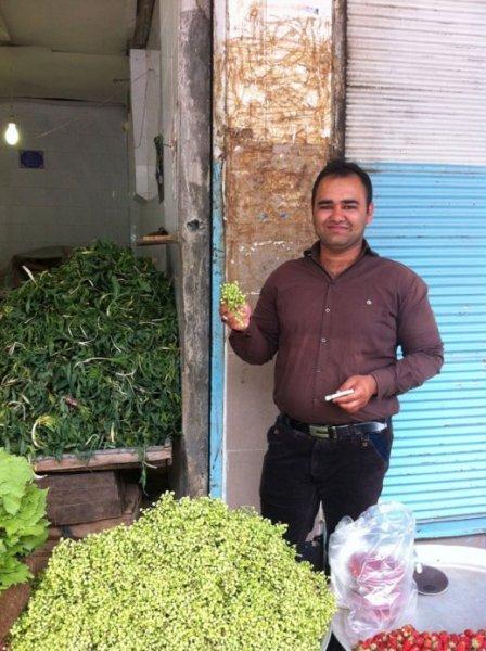 grape-leaves-vanooshk-kermanshah-bazar-iran-07
